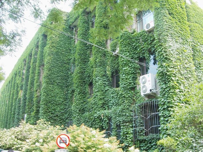 北京大学 Peking University