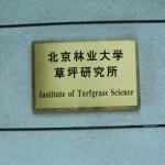 Institute of Turfgrass Science (草坪研究所的怪异翻译)