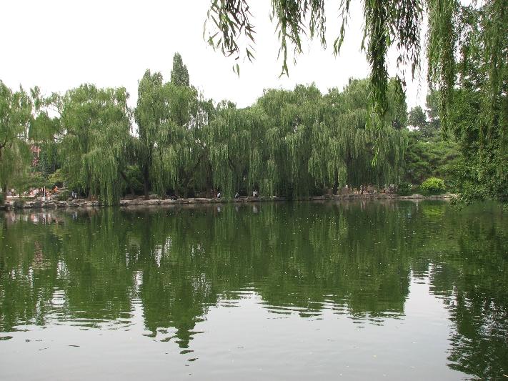 北京动物园 Beijing Zoo