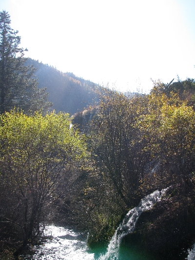 山光 Mountain Light